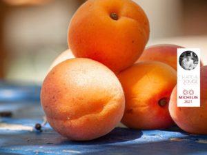 Tarte Abricot - Romarin