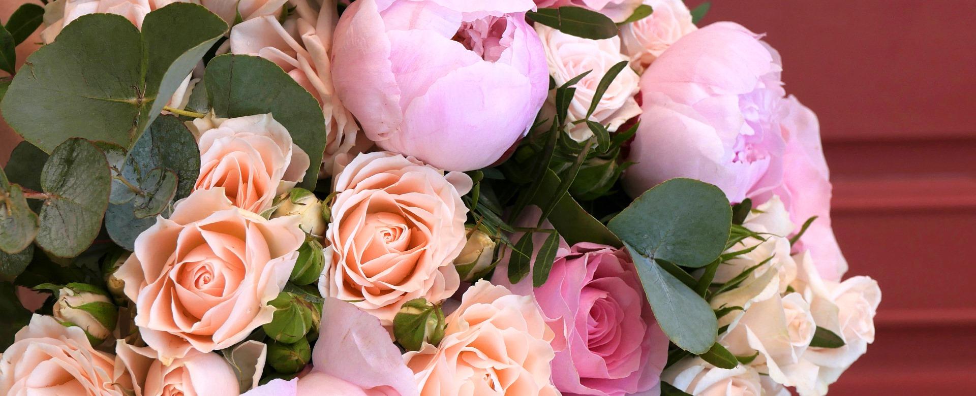 au nom de la rose 1